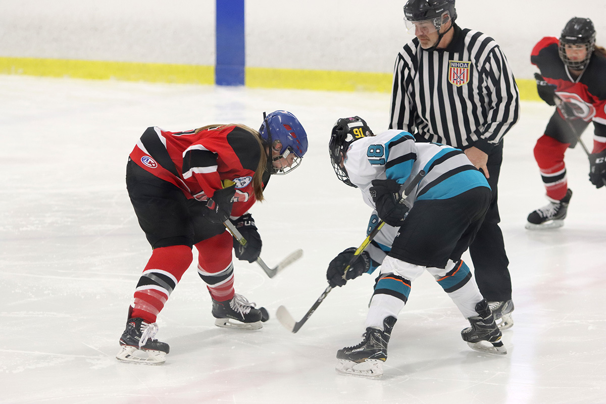 WNY Girls Varsity Ice Hockey Federation playoff preview